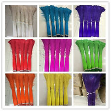 Wholesale 10/50 pcs peacock feather eye 28-32 inches /70-80 cm in various colors