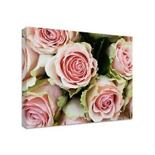 Pink Roses - Framed Canvas Art Print - Nature Art - Many Sizes