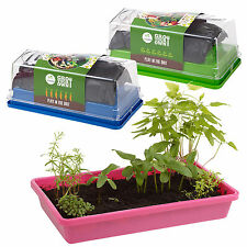Indoor Propagator Home Grow Planter Kit Vegetables Herbs Flowers Seed Greenhouse