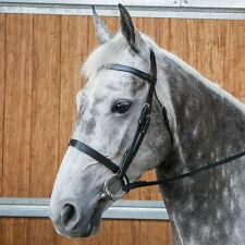 Requisite Snaffle Bridle and Reins Leather Riding Noseband Brow Band