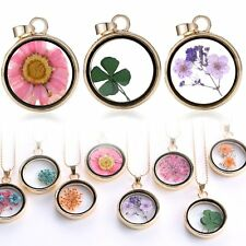 Dried Flower Round Locket Pendant Gold Glass Charm Chain Necklace Botanic New