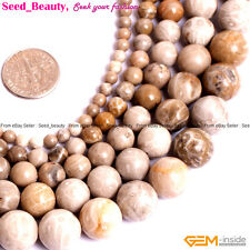 """Natural Gemstone Chrysanthemum Stone Coral Fossil Beads For Jewelry Making 15"""""""