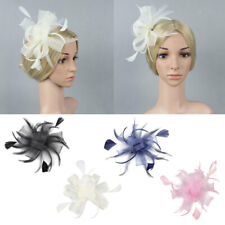 Fascinator Colord Mesh Feather Women Hair Net Clip Wedding Banquet Accessory