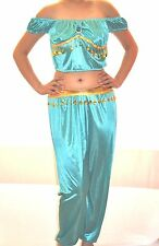 ADULT BLUE  ALADDIN JASMINE COSTUME GENIE ARABIAN HAREM BELLY  COSTUME SALE!