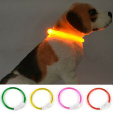Band Safety Pet Dog Collar Waterproof LED Flashing Light Rechargeable USB New