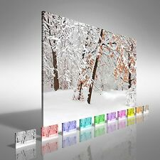 Winter Forest Canvas Print Large Picture Wall Art