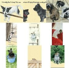 Funny Humour Little Dog Laughed Greeting Card Terrier Dogs