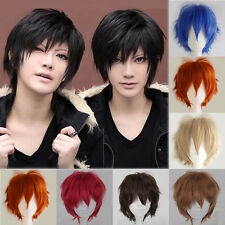 Hot Sale Anime Wigs Heat Resistant Layered Short Straight Cosplay Fancy Dress UK