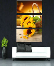 3 Panel Decor Art Painting Sunflower HD Picture Printed on Canvas Wall Room Home