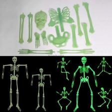 New Large Halloween Glow In The Dark Hanging Jointed Skeleton Decoration Prop