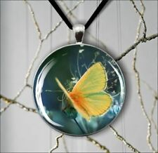 BUTTERFLY YELLOW WINGS INSECT ROUND PENDANT NECKLACE -aes4X