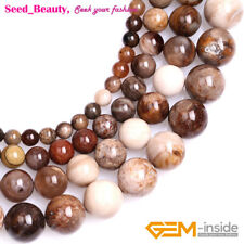 Natural Brown American Silicified Wood Opalite Round Beads Jewelry Making 15''
