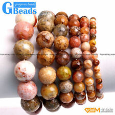 Handmade Multi-Color Ocean Jasper Beaded Stretchy Stone Bracelet Free Shipping