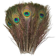 Real Natural Peacock Feathers about 10-12 Inches 10pcs 25pcs 50pcs 100pcs 200pcs