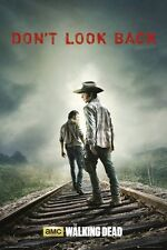 New The Walking Dead Don't Look Back Poster
