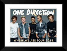 One Direction Harry Styles tour poster new