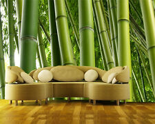 Photo Wall Mural Bamboo Tree no.2  Wallpaper Wall art Wall decor Plants Leaves