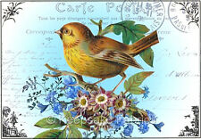 Carte Postale Bird Roses Collage Quilt Block Multi Szs FrEE ShiP WoRld WiDE (P4