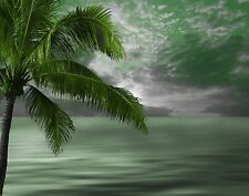 Green Wall Art/ Coastal/Palm Tree/ Modern/ Bedroom Decor Matted Picture
