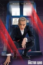 Doctor Who The Doctor and The Tardis Dr Who Poster 61x91.5cm