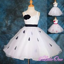 Wedding Flower Girl Petals Pageant Party Special Occasion Dress Size 18M-7 #183
