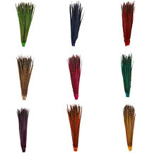 Natural Pheasant Tail Feathers, Dyed, 20-22 Inch / 50-55 cm DIY Craft Feather