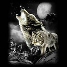 Wolf Howling Night Moon Wilderness Wolves Long Sleeve T-Shirt