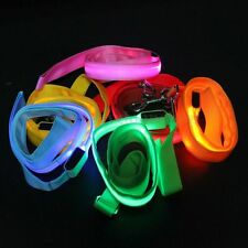 Party LED Flashing Light Dog Pet Safety Glow Collar Rope Belt Harness Leash Lead