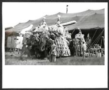 RINGLING BROS BARNUM & BAILEY CIRCUS ELEPHANTS WOMEN PHOTO (141)