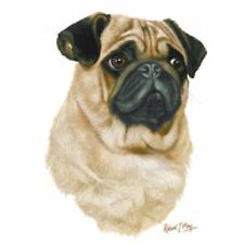 Pug Robert May T Shirt Pick Your Size Youth Medium to 6 X Large
