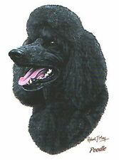 Black Poodle Robert May Pick Your Size T Shirt Youth Small-6 X Large
