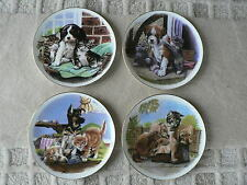 Royal Albert Animal Plate, Puppy, Kitten, Dog, Cat, Playful Friends, Individual
