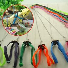 Colorful Reptile Hauling Cable Lizard Harness Leash Lead Rope for Walking