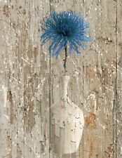 Rustic Blue Brown Home Decor, Blue Flower In Vase Home Decor Wall Art Picture