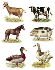 Select Farm Animal Cow Goat Horse Duck Pig Rooster Waterslide Ceramic Decals Bx