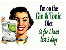 GIN and TONIC DIET funny T SHIRT womans LADIES 5 sizes 8 colours alcohol drunk