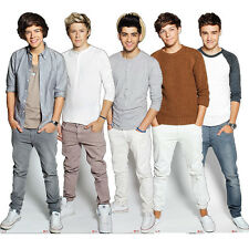 ONE DIRECTION STANDEE TABLE DESKTOP STANDUP CUTOUT CARDBOARD 1D CELEBRITY MASK