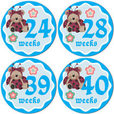 Unisex Just Born, Monthly Baby Milestone, Pregnancy, 12, 24 Month Stickers #019