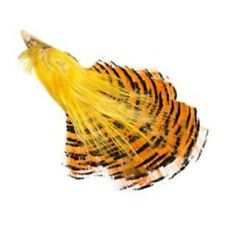 GOLDEN PHEASANT HEAD CREST TIPPETS SKIN -- each sold individually fly tying