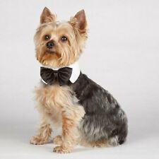 ANY SIZE - ARIA - DOG GROOMING PARTY - BLACK SATIN BOWTIE