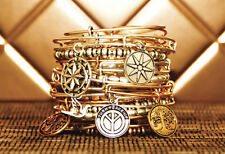 Alex and Ani You Choose Expandable Bracelet New Free Fast Shipping