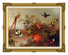 Tropical Landscape with Hummingbirds Martin J Heade Framed Fine Art Repro Canvas