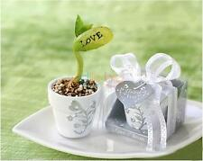10/20 Magic Bean Seeds Gift Plant Growing Message Word Love Office Funny