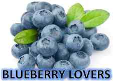 BLUEBERRY LOVERS COLLECTION Soy Wax Clamshell Break Away tart melt candle