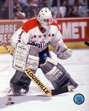 Mike Liut Washington Capitals NHL Action Photo MA034 (Select Size)