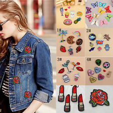 Fashion DIY Embroidered Craft Cloth Decor Badge Iron On Patch Sew Motif Applique