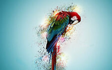 Modern Home Decor art macaw parrot bird psychedelic Print oil painting on canvas