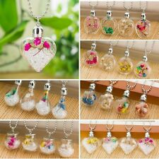 Natural Real Dried Flower Plant Wish Glass Floating Locket Pendant Necklace Gift