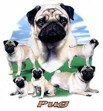 PUG DOG T-SHIRT IN COLORS WS719