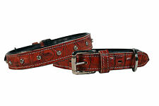 Designer Alligator Dog Collar with Crystals Crafted from Wickett & Craig Leather